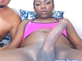 black-hard-shemale-tubes